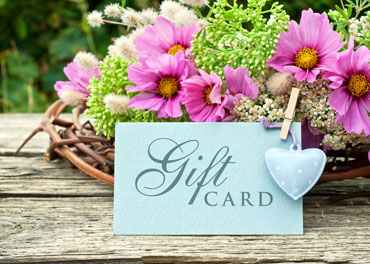 Gift & Cards